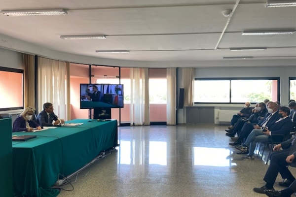 Coldiretti Puglia, 386mila gli ulivi delle specie resistenti impiantati in Salento.